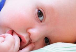 Guia do Aleitamento Materno