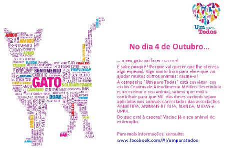 dia-mundial-do-gato