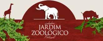 ferias-de-verao-jardim-zoologico